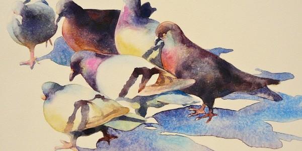 Güvercinlerin Kralı_Ariel Freeman