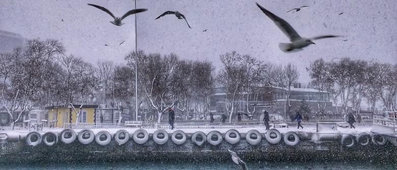 Kartpostal manzarasına karşı kar şiirleri